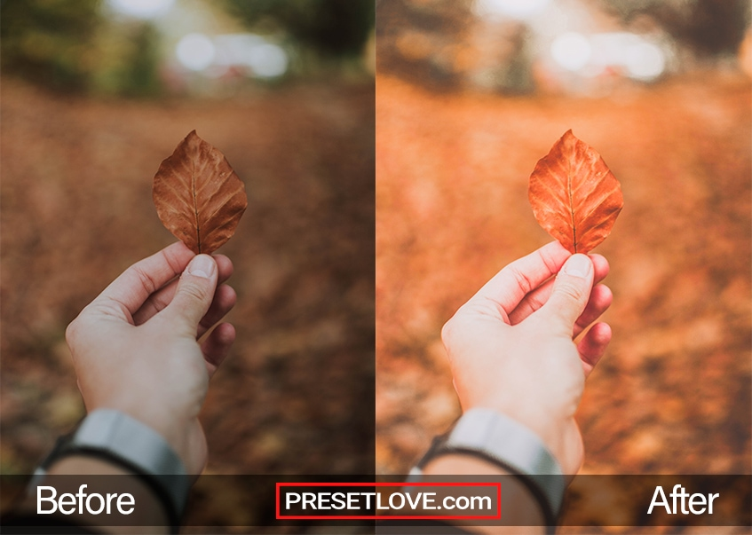 A brightened photo of a hand holding a brown leaf