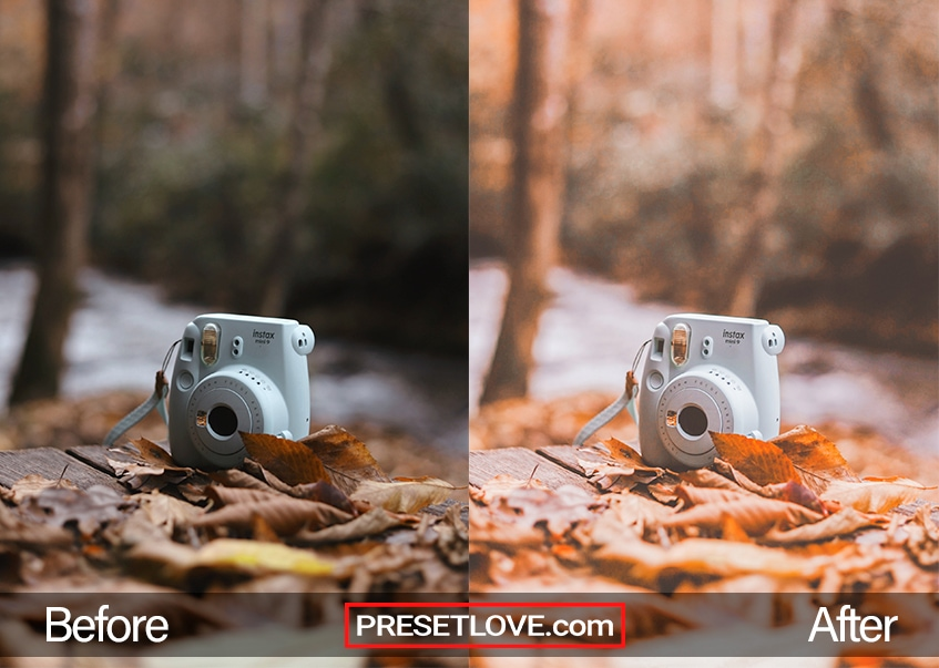 Photo of an analog camera on a pile of autumn leaves, enhanced by a fall Lightroom preset