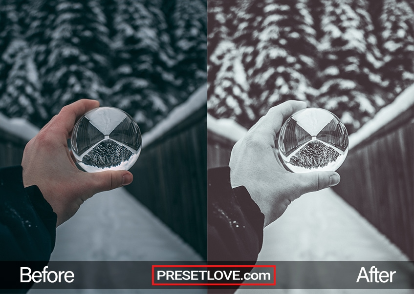 A silver monochrome film photo of a hand holding a glass ball, with snowy trees in the background
