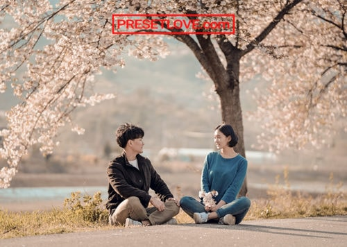 A couple sitting under a cherry blossom tree