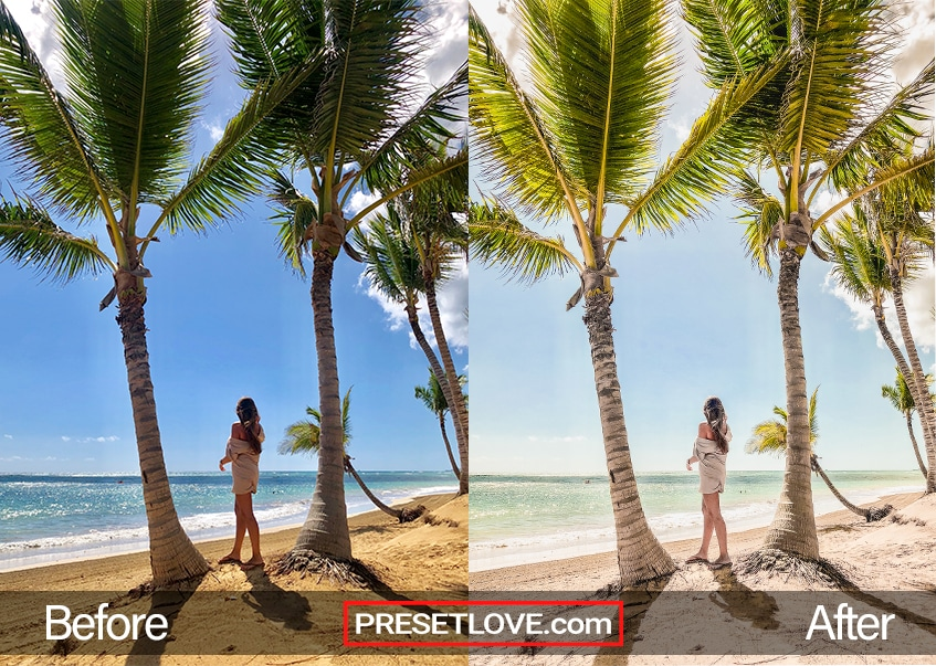 A warm and vibrant photo of a woman standing between two palm trees at the beach
