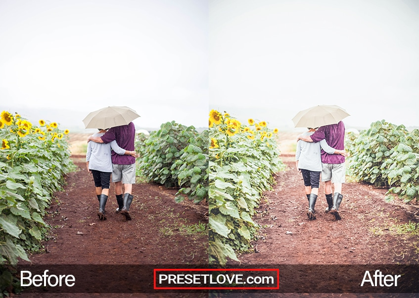 A couple sharing an umbrella while walking on tilled soil