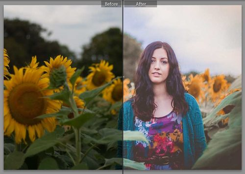 Modern Free Lightroom Presets