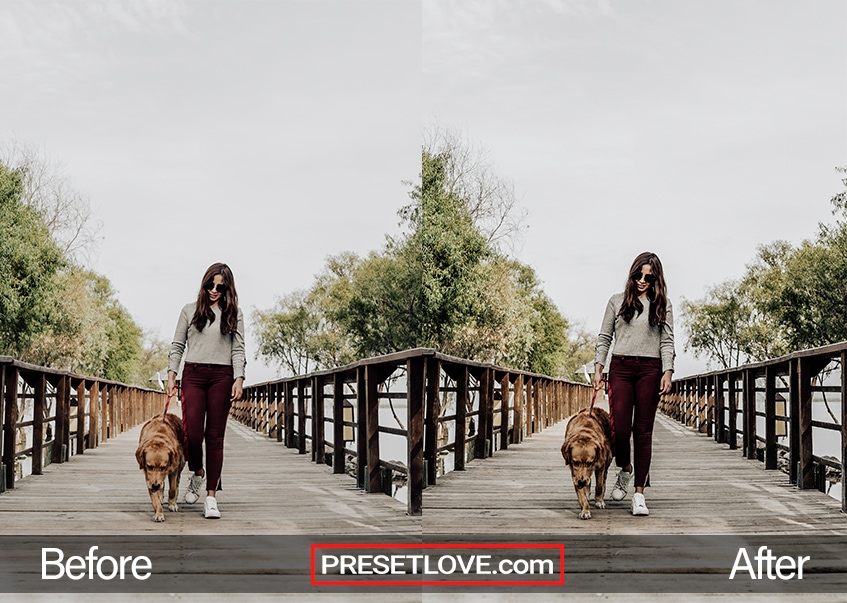 A vibrant photo of a woman and her dog walking side-by-side on a wooden bridge