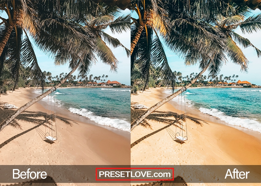 A warm and vivid photo of a swing hanging from a palm tree at a beach