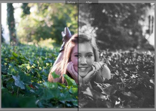 Film Free Lightroom Presets
