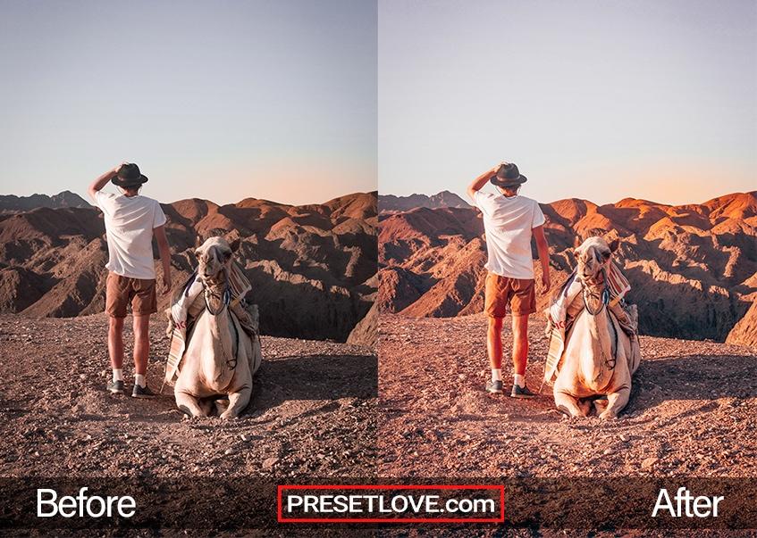 A man viewing a desert terrain with a camel beside him