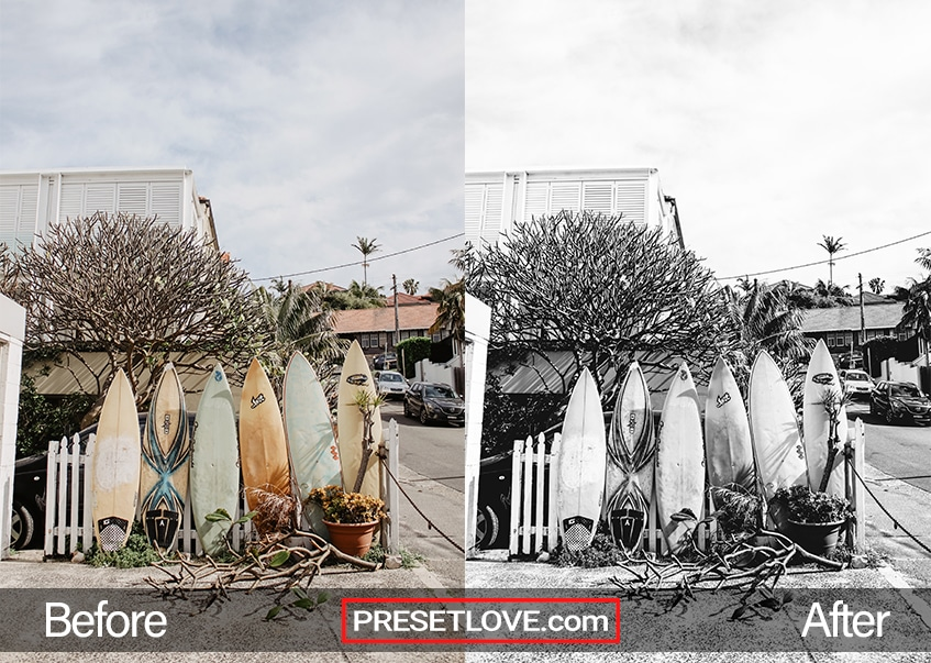 A black and white photo of surfboards lined up against a white picket fence