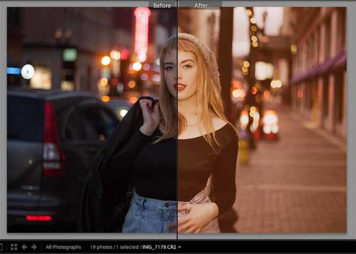 Portrait Free Lightroom Presets