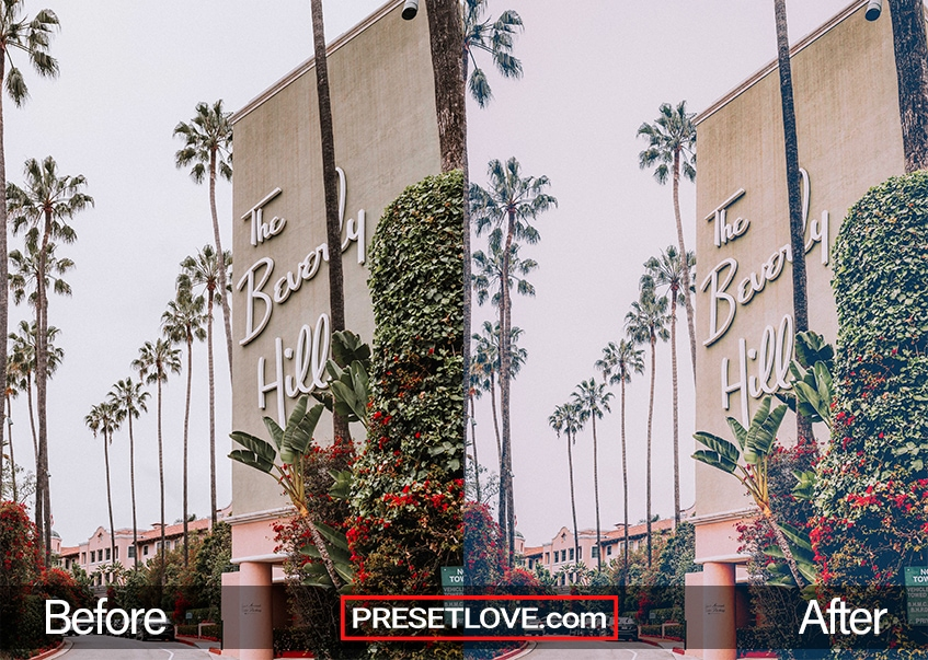 A soft vintage film photo of The Beverly Hills sign