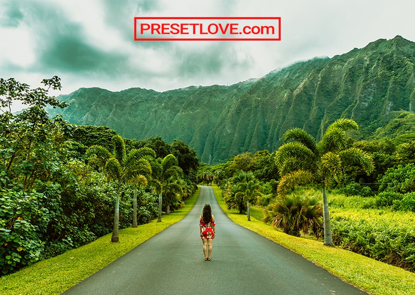 A vibrant photo of a woman standing on a road lined with vivid green trees