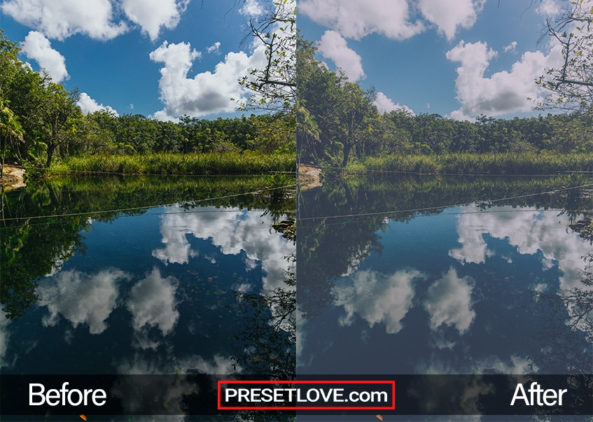 A light film photo of a landscape with clear blue skies and trees reflecting in the water