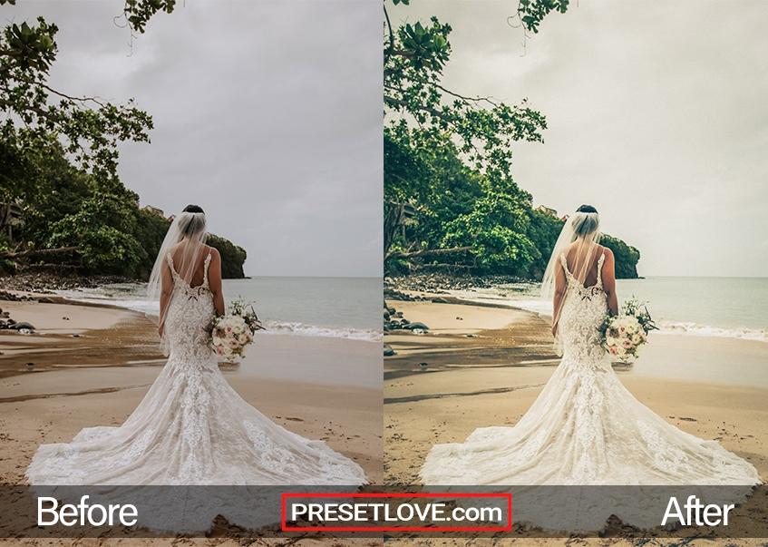 A warm outdoor wedding photo of a bride at the beach, with her back to the camera