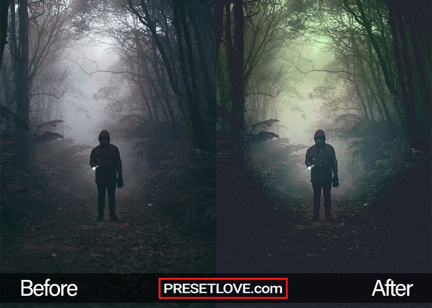 A dark cinematic photo of a man in the woods