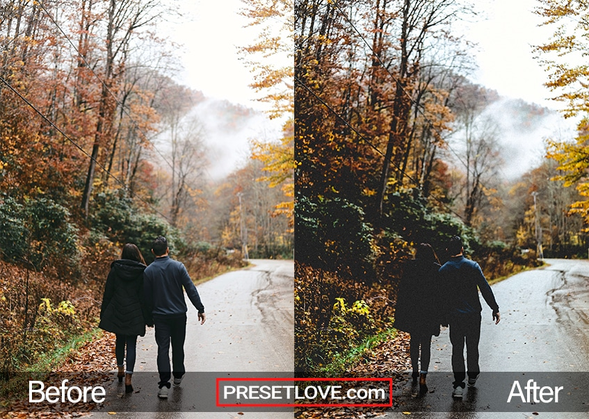 A couple walking on a road lines with trees in autumn