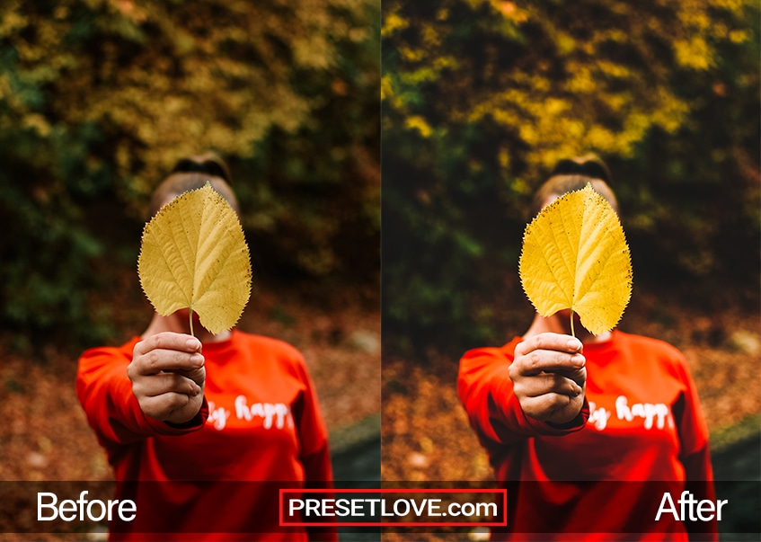 A bright and vivid photo of someone holding up a leaf to the camera