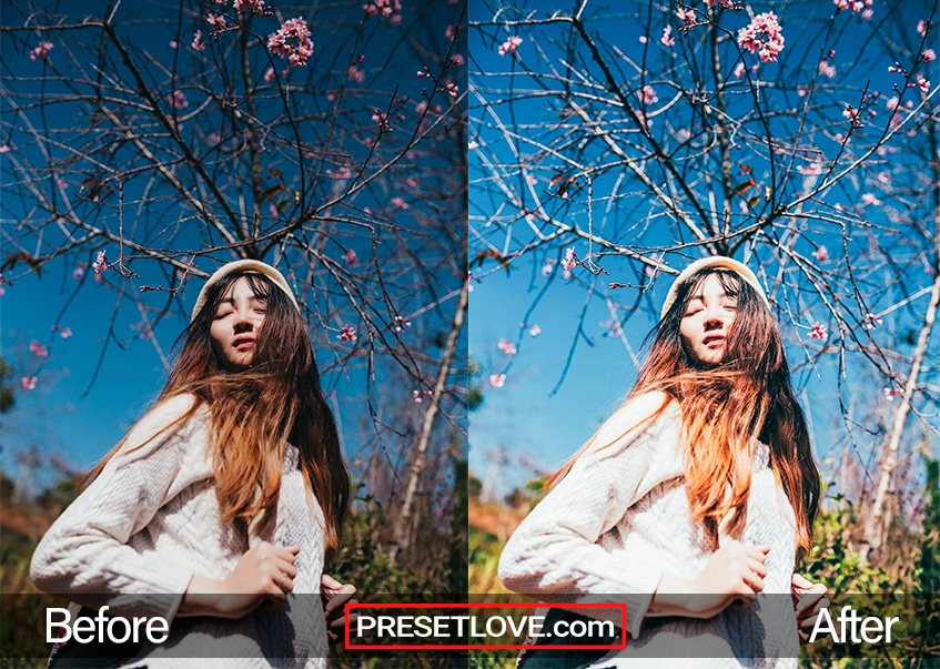 A bright portrait of a woman with cherry blossoms behind her