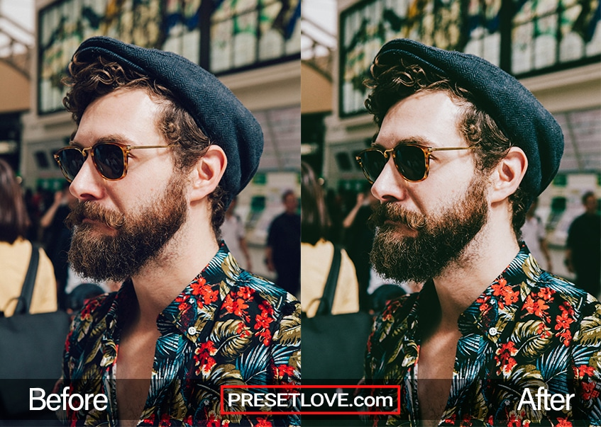 Cinema Stock 2 Preset - beard