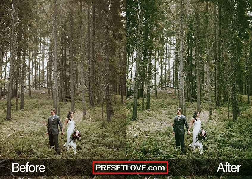 Cinema Stock 2 Preset - newlywed