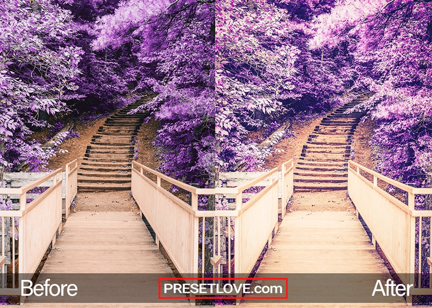 Butterflies preset - purple tree