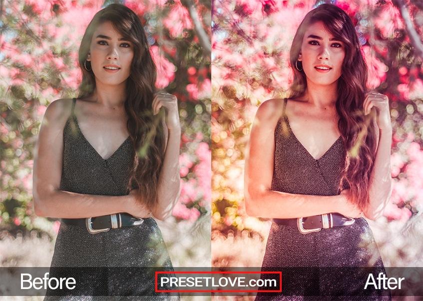 Soft Dreams Preset - model