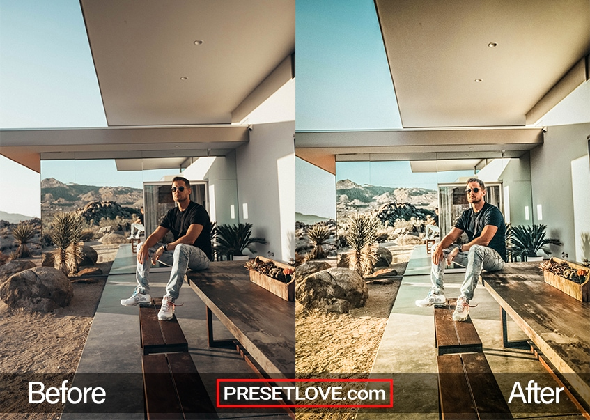 HDR Preset - cool guy