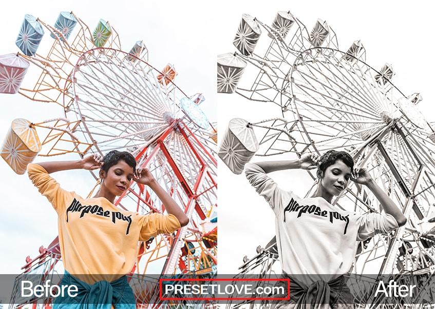 Rich Mono Preset - Ferris Wheel