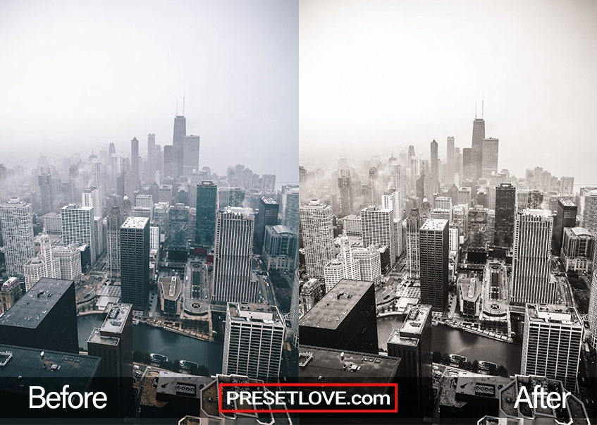Rich Mono Preset - cityscape