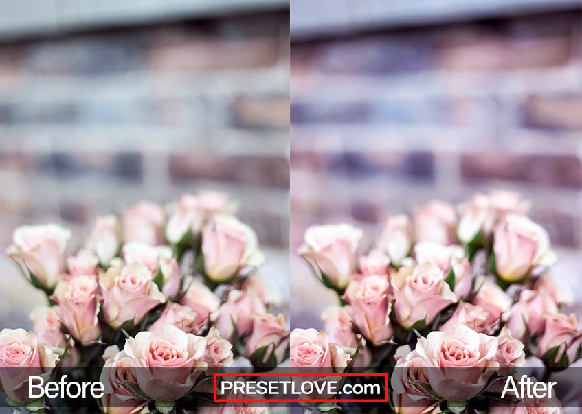 A bouquet of pink roses with a brick wall in the background