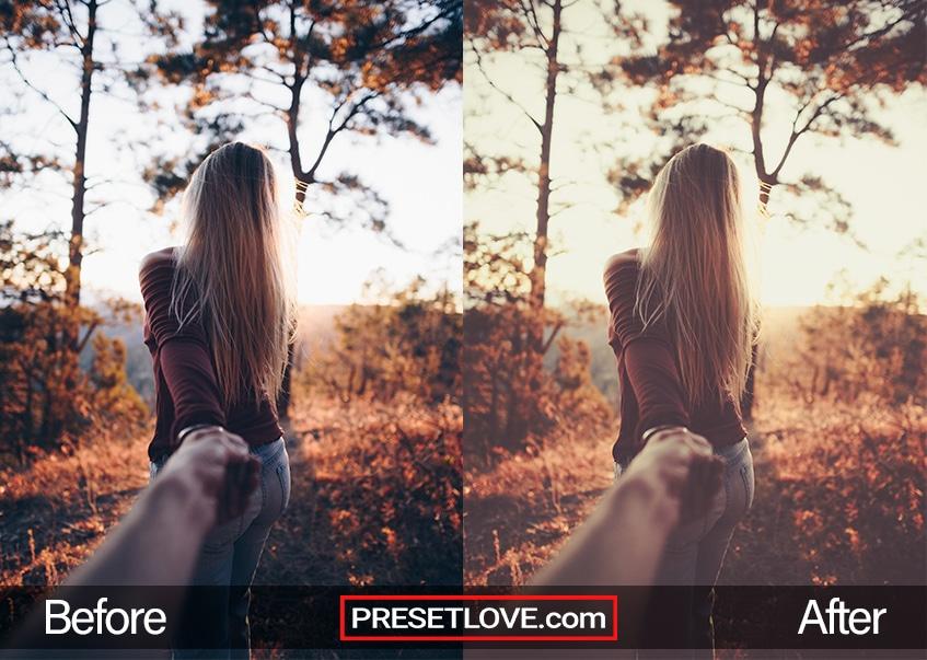 Autumn vintage preset- hold me