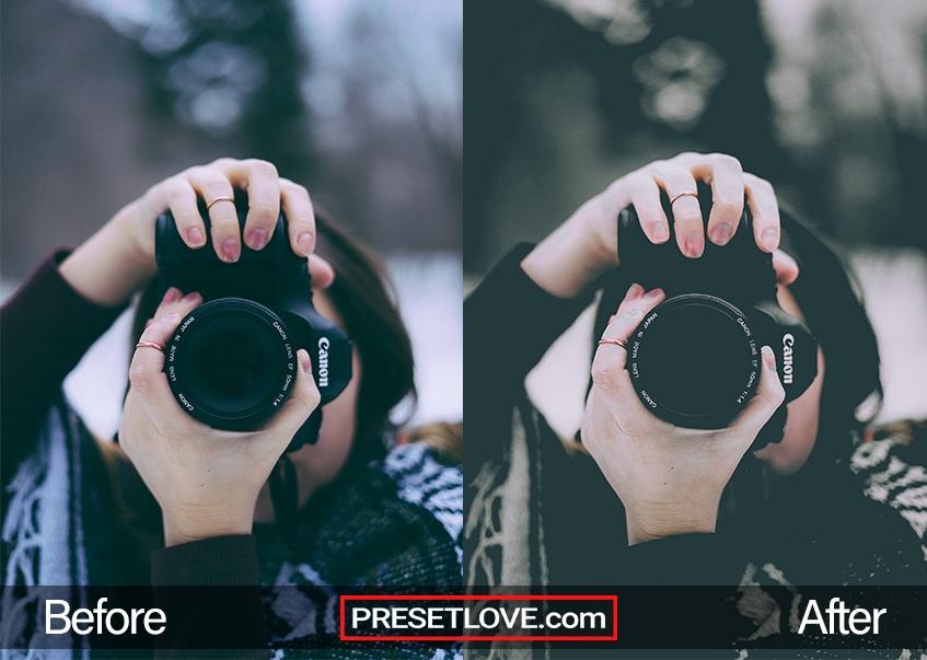 Dark Desire Preset - photographer