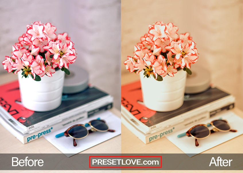 Divina Lolla Preset - vase and books