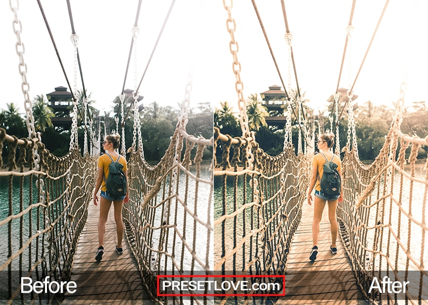 Aged Film Preset Hanging Bridge