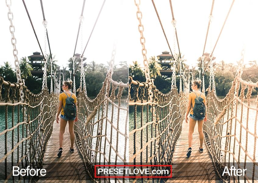Aged Film Preset Hanging Bridge