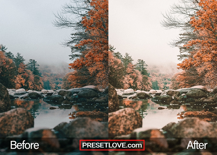 Autumn Preset stream