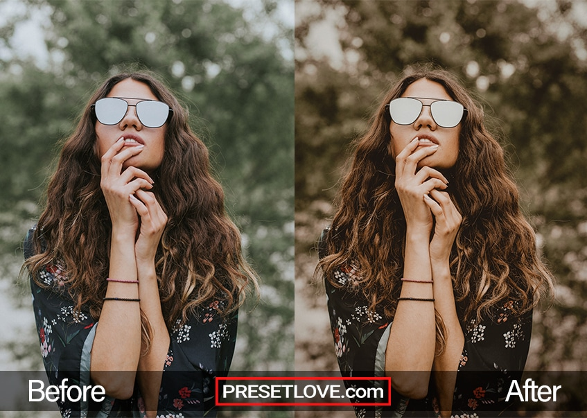 Cinematic 2 Preset Bohemian Chic