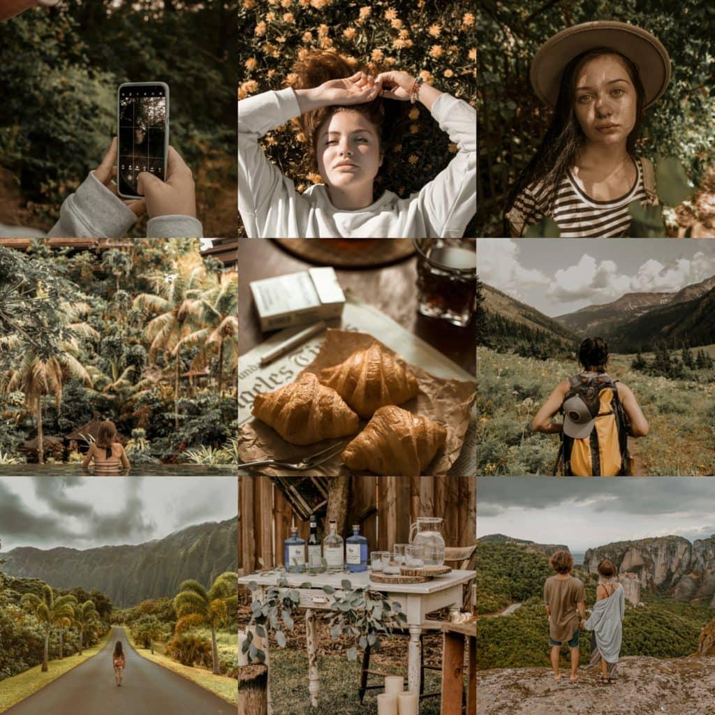 Russet Hue Original Collage - Premium Lightroom Preset by PresetLove
