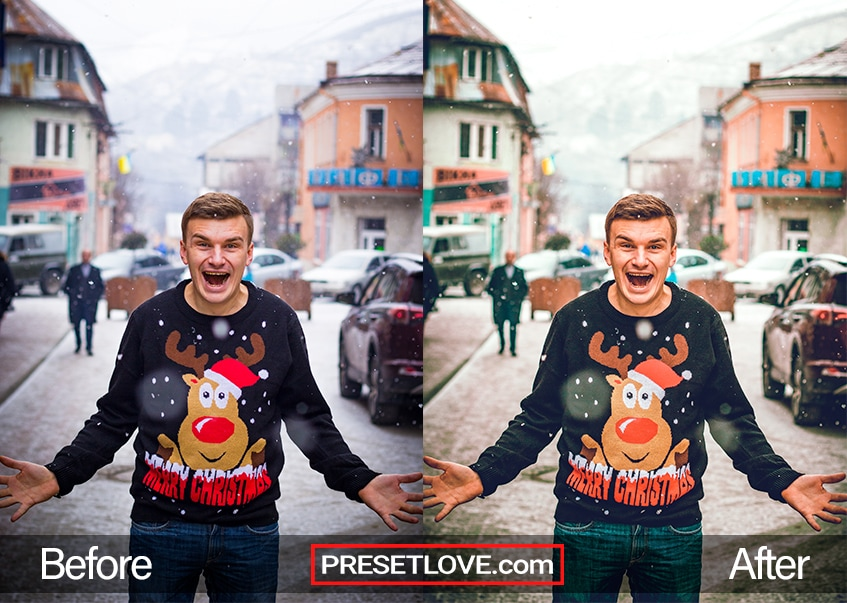 Christmas preset - rudoph
