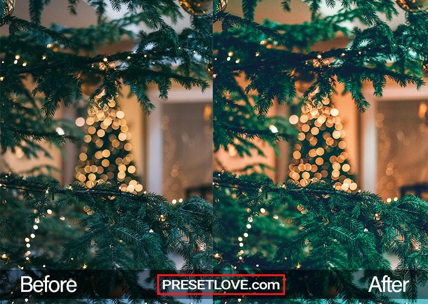 Christmas preset - lights