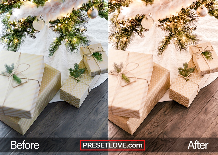 New Year's Party Preset - gifts