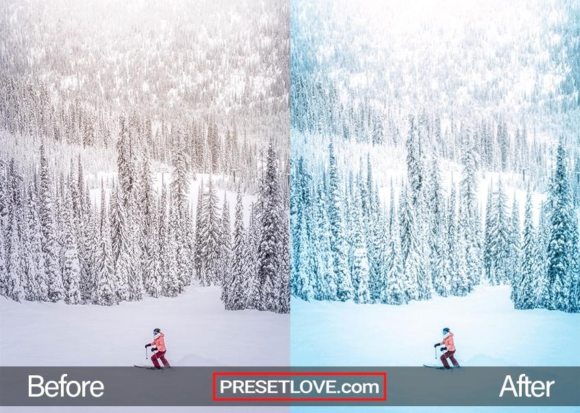 Winter Sports Preset - skiing