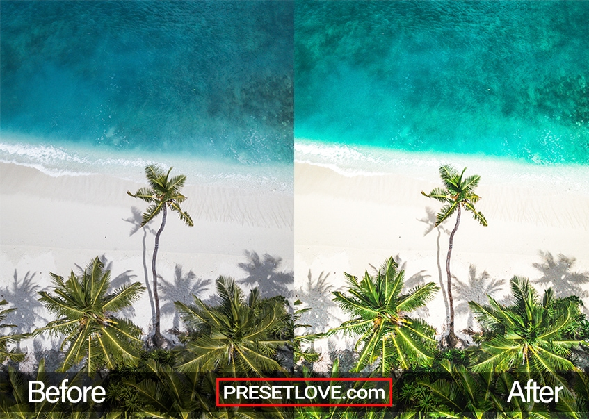Exotic Trip Preset - tropical island