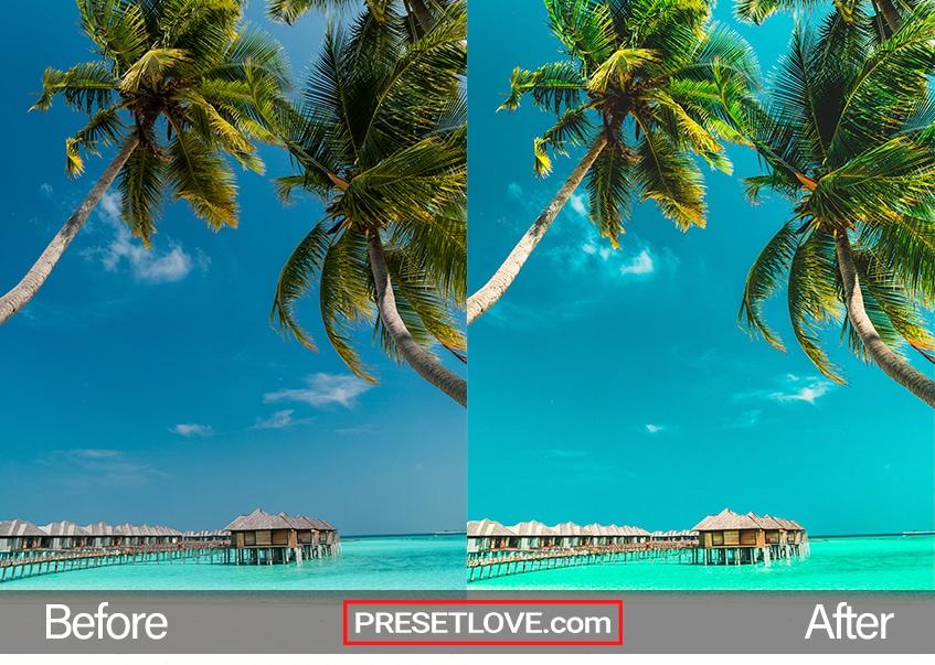 Exotic Trip Preset - paradise