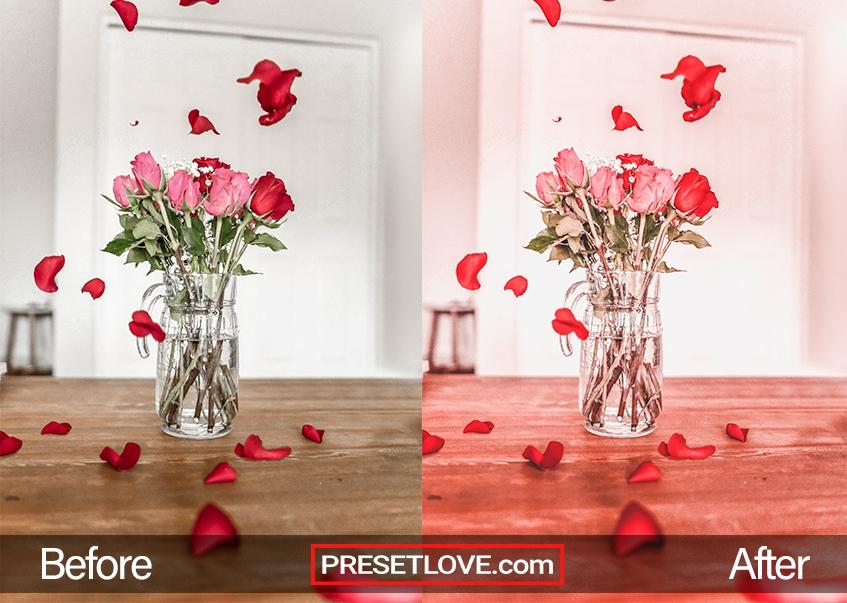 Valentine's Day Preset - roses