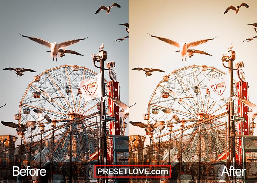 A ferris wheel with birds flying overhead