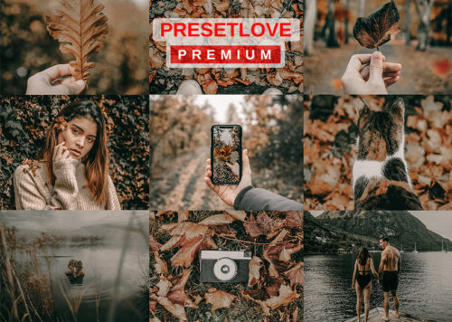 Autumnal Shroud premium preset for fall by PresetLove