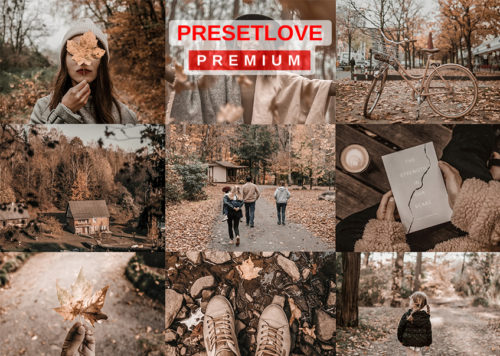 Russet Hue Premium Autumn Brown Preset for Lightroom - PresetLove