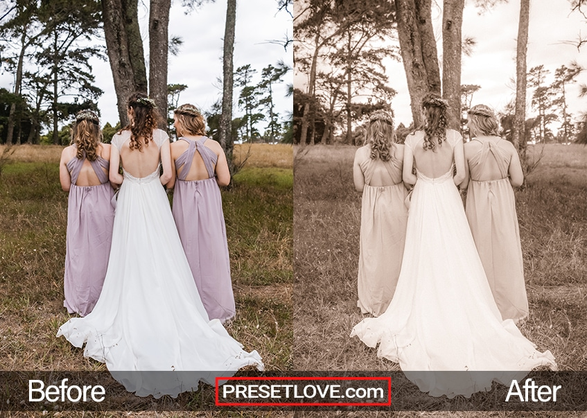 An outdoor sepia photo of bridesmaids with their backs to the camera
