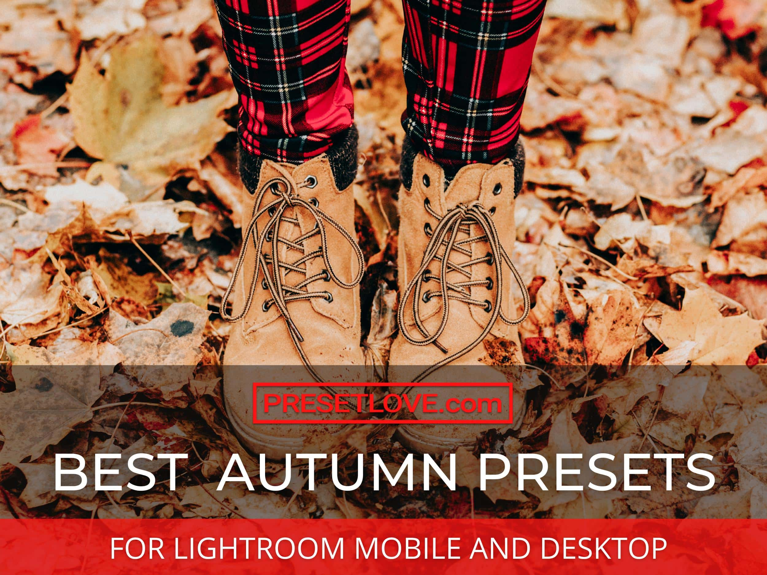 Best Fall Presets for Lightroom - PresetLove Fall Presets