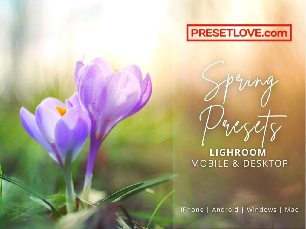 Spring Lightroom Presets by PresetLove